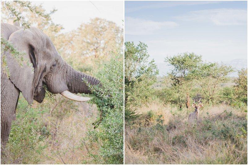 Lizel & Guy se troue soos op www.mooitroues.co.za_0007