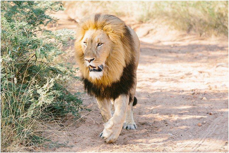 Lizel & Guy se troue soos op www.mooitroues.co.za_0008